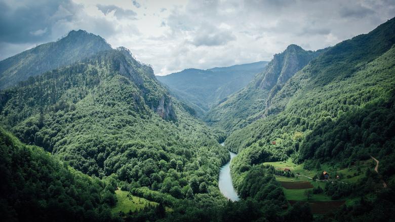 Tara canyon - Een zicht vanop de Tara river bridge in Montenegro. Prachtig stukje natuur, waar je verschillende avontuurlijke activiteiten kan doen. W