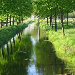 zomaar in de polder
