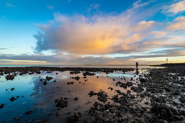Bergen oesters -