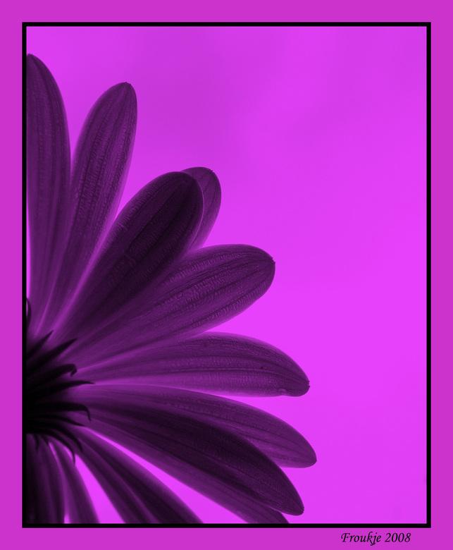 Pink Ribbon - Mijn bijdrage aan het roze lint