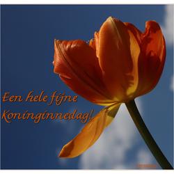 Oranje boven, oranje boven ......