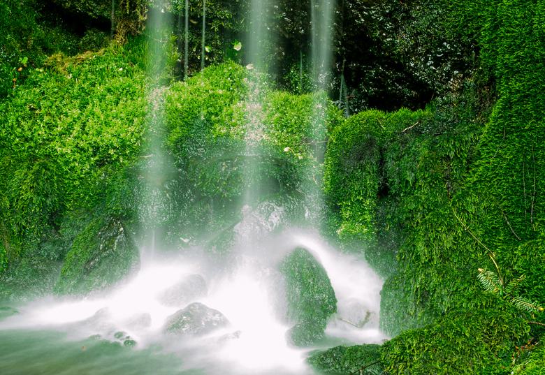 waterval Botanische zoomdag foto 7 - dankzij de gooie coaching van Detty toch nog dit resultaat kunnen maken. Bedankt Detty voor de gooien hulp. mijn