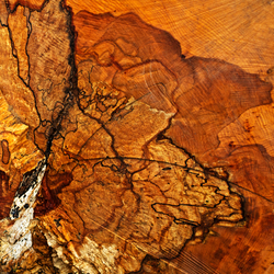 Abstract - hout