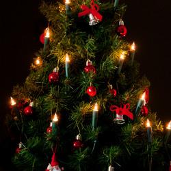 klein kerstboompje.JPG