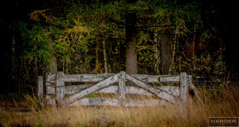 Hekwerk - Dit hek heb ik al eerder geplaatst, maar nu van de andere kant vastgelegd. Niets bijzonder verder, gewoon alleen het hek er op maakt het af.