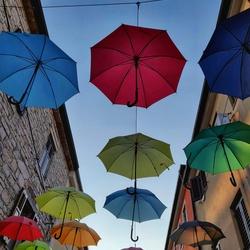 Novigrad paraplu's