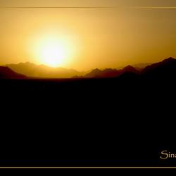 Sinai desert nightfall