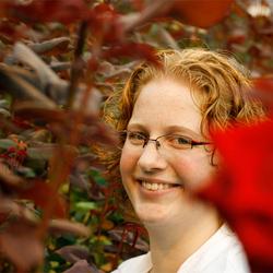 Tussen de rozen