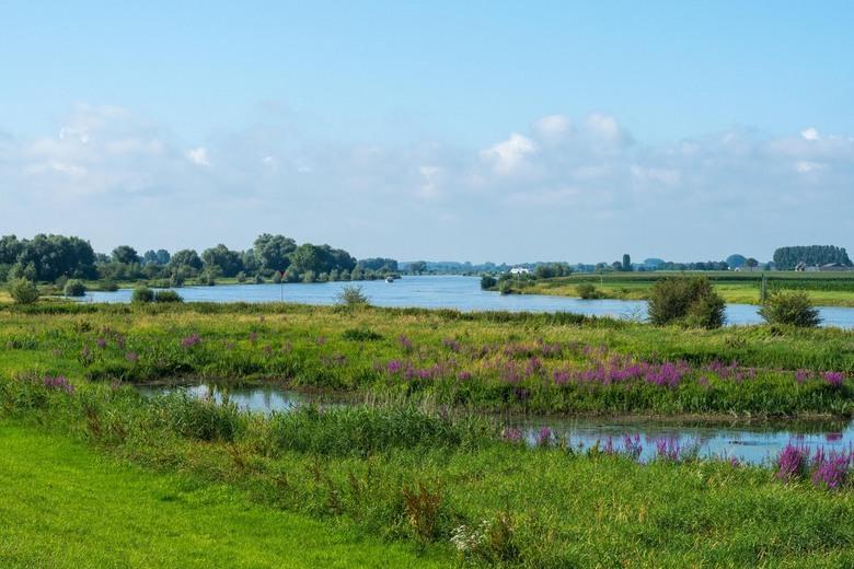 IJssellandschap - De rivier de IJssel vormt de natuurlijke grens tussen de provincies Gelderland en Overijssel.<br /> Het blijft een genot om alle as