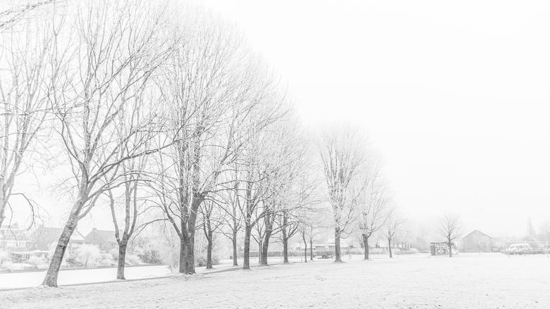 Winters wit Westeinde -