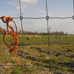doorkijkje met touw