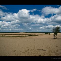 loons en drunense duinen