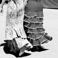 Las damas elegantes