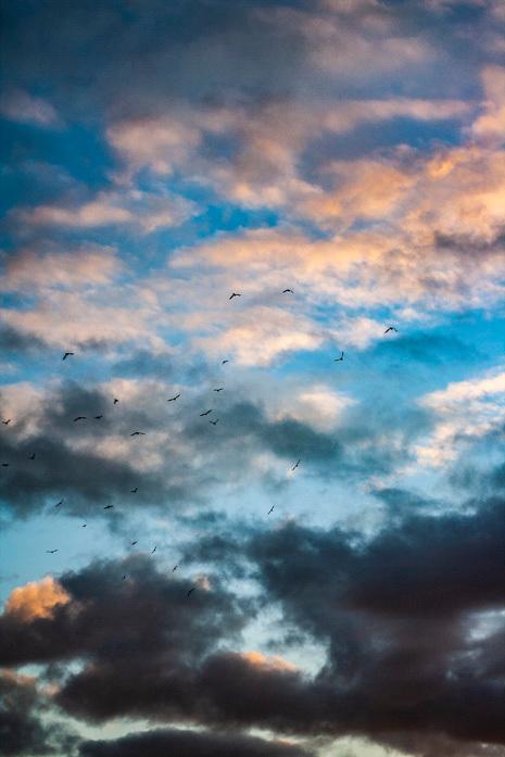 een wisselvallige zonsondergang  -