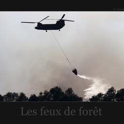 Les feux de foret