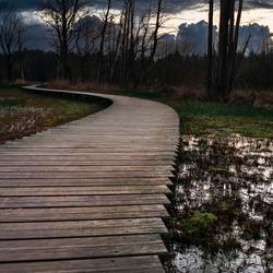 Houten wandel Pad in Epe