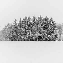 Zondag...sneeuwdag