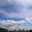 Brabantse luchten