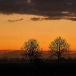 Fourtree sunset
