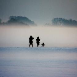 opgaan in mist