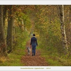 Dogwalk - Herfst in Lippenhuizen