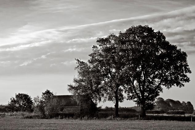 Een oud schuurtje - Aan de rand van een rustgebied voor wild in het Gelderse Loenen staat dit oude schuurtje. Vanaf een weiland, grenzend aan het rust