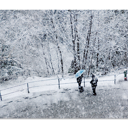 sneeuwval 1