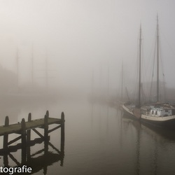 Harlinger haven in mist gehuld.