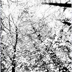 De vier seizoenen....winter......