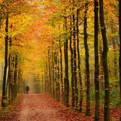 Colourfull walk