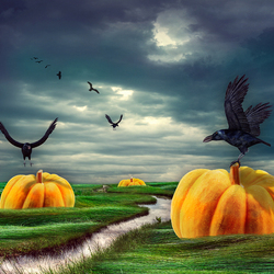 Bewerking: . . . Pumpkin World . . .