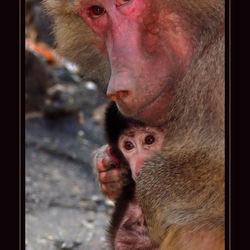 moeder en kind ........