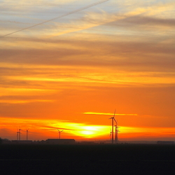 Zonsondergang in Flevoland