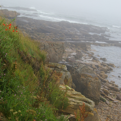 The Five Coastal Path