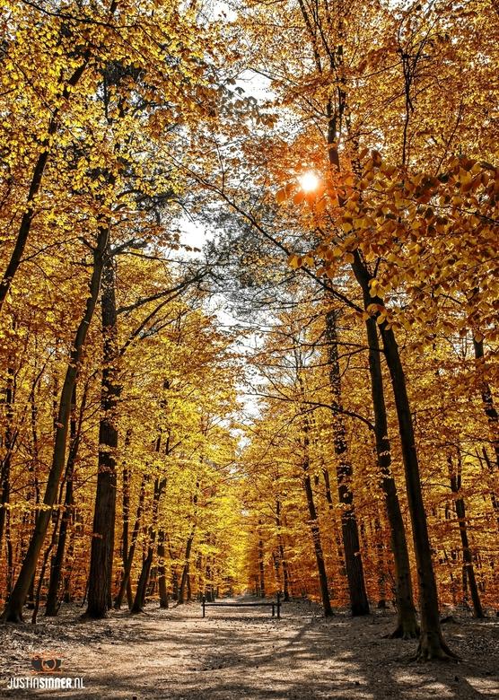 Herfst op Texel.
