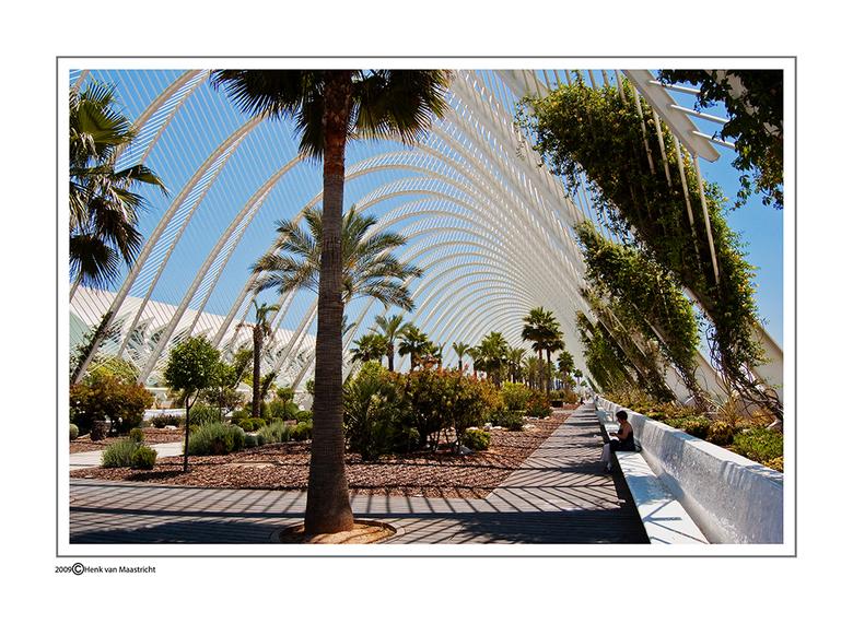 Calatrava-valencia - De architect van ook het station in Luik een must voor iedere fotograaf a.s .woensdag is het zover een dagje Luik.<br /> Tot mij