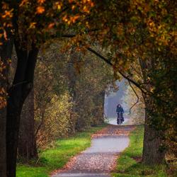 Zachte herfst
