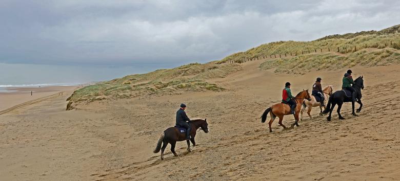 Het duin op - Paardrijden in het waterrijke duin-en natuurgebied de Meijendel bij Wassenaar