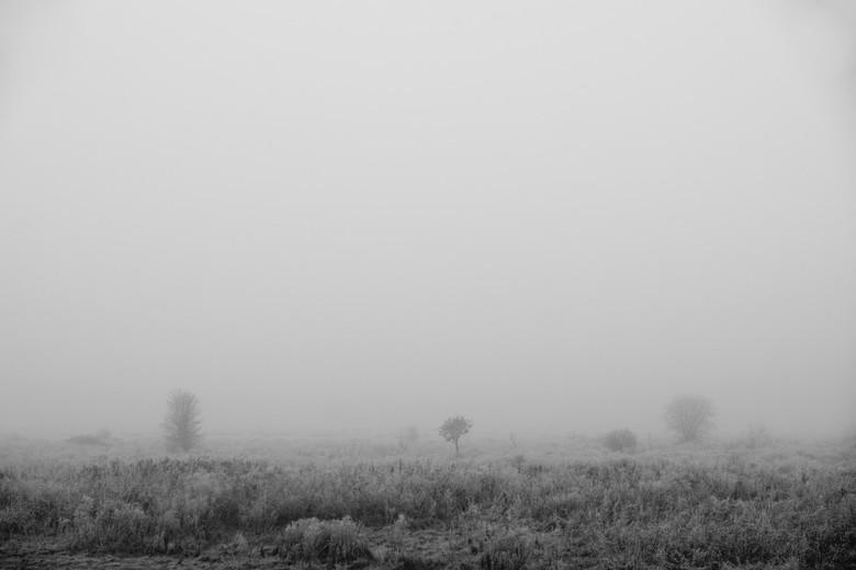 Markiezaatsmeer - Mist