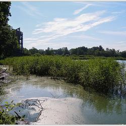Onze Limburgse Natuur 2