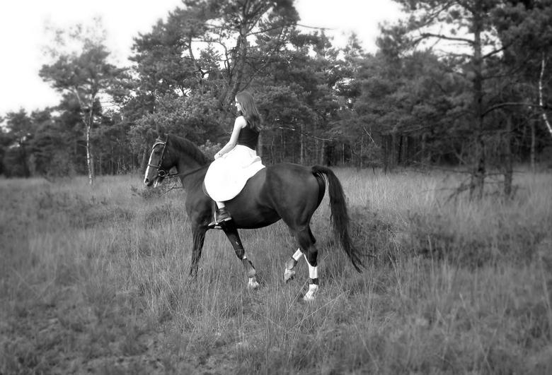 Fantasy - Paard met ruiter