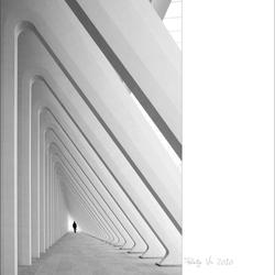 Calatrava's Guillemins 2