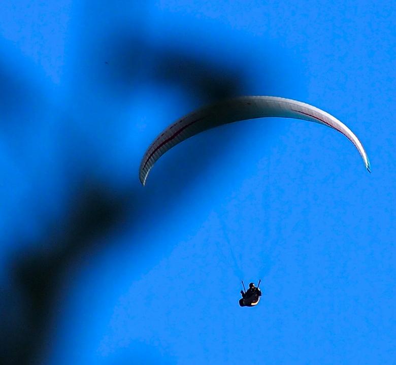 Paraglider in the air - Vanaf de Camping vlakbij het plaatsje Kinding Duitsland genomen met een boomtakje op de voorgrond.