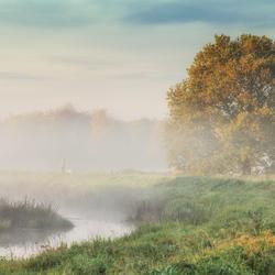 *Misty morning*