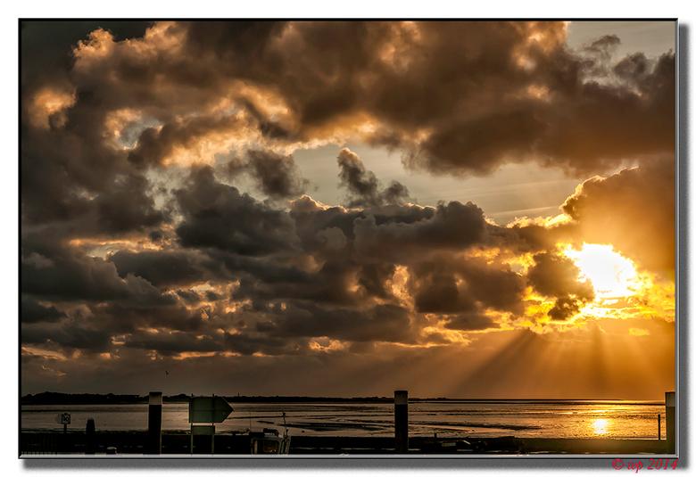 Morgenstond - De morgenstond geeft goud op de foto.