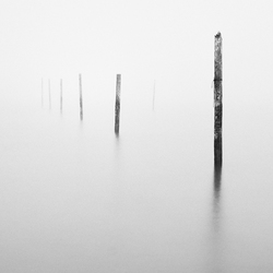 Palen visnetten IJsselmeer