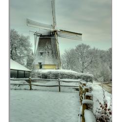 Witte molen