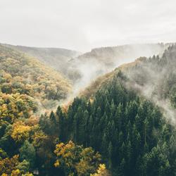 Last autumns
