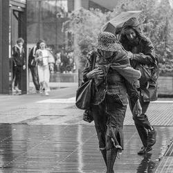 Rainy day in Rotterdam