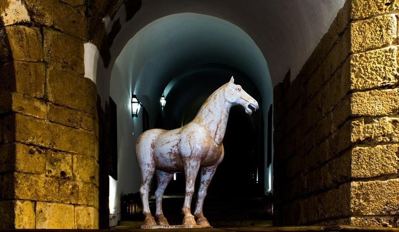 Paard in de gang - Hal van Forte S. Filipe.